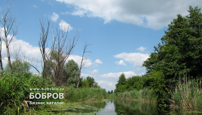 река битюг бобровский район