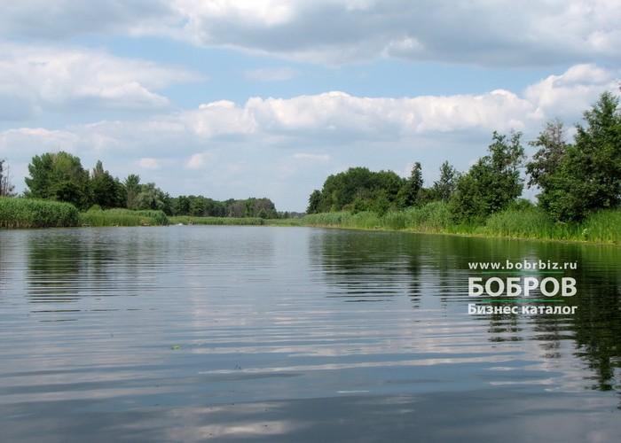 река битюг в боброве