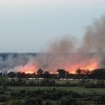 пожар камыша на пляже уголок Бобров