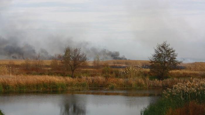 горит камыш в Боброве пожар