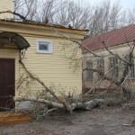 дерево упало на жилой дом