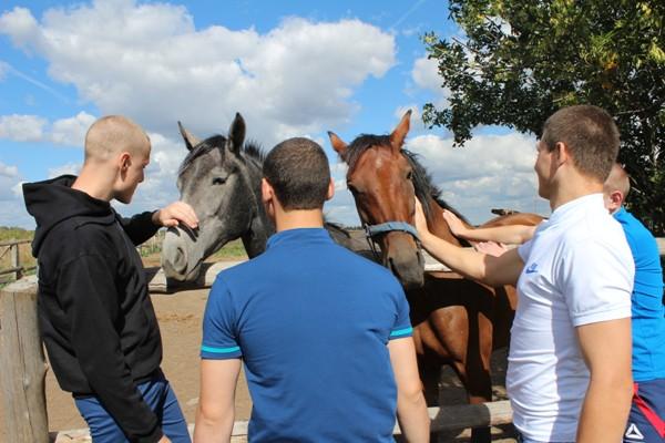 воспитанники бобровской вк  на конюшне