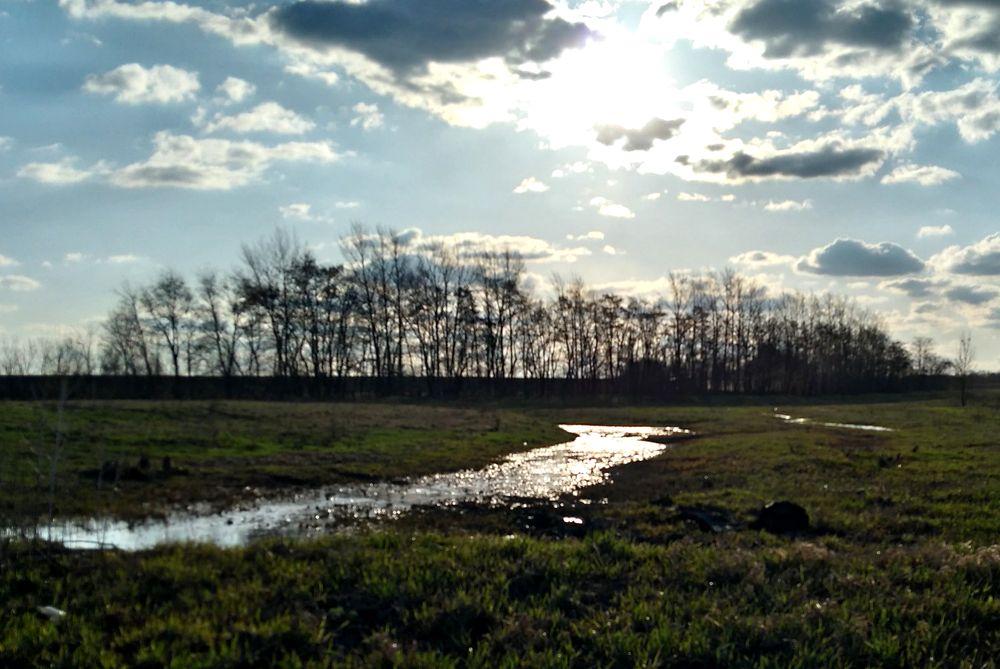 в поле найдены останки пропавшего человека