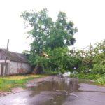 ураган в боброве 24 июня 2018 последствия