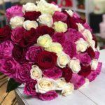 Заказ и доставка цветов в Боброве Фикус Пикус (5)